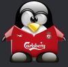 soccer penguin