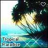 tropical paradise <3