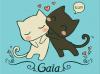 i love you gaia kittens
