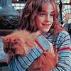 hermione granger and crookshanks